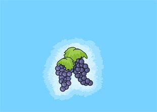 Treasure in the Vineyard