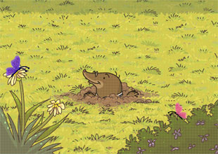 The Wind in the Willows 1: It Is Spring!