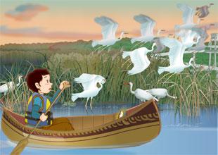 QT's Science Adventures 6: Canoeing through Wetlands
