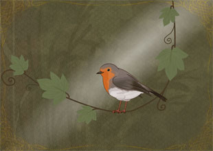 The Secret Garden 9: The Robin Shows the Way