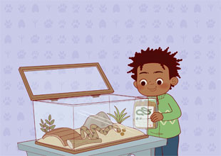 The Pet Lovers Club 14: Sammy's Supper
