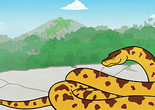 The Jungle Book 7: Help from Kaa